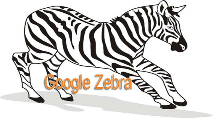 Thuật Toán Zebra: điều tất yếu phải xảy ra spam SEO Social, làm sai entity